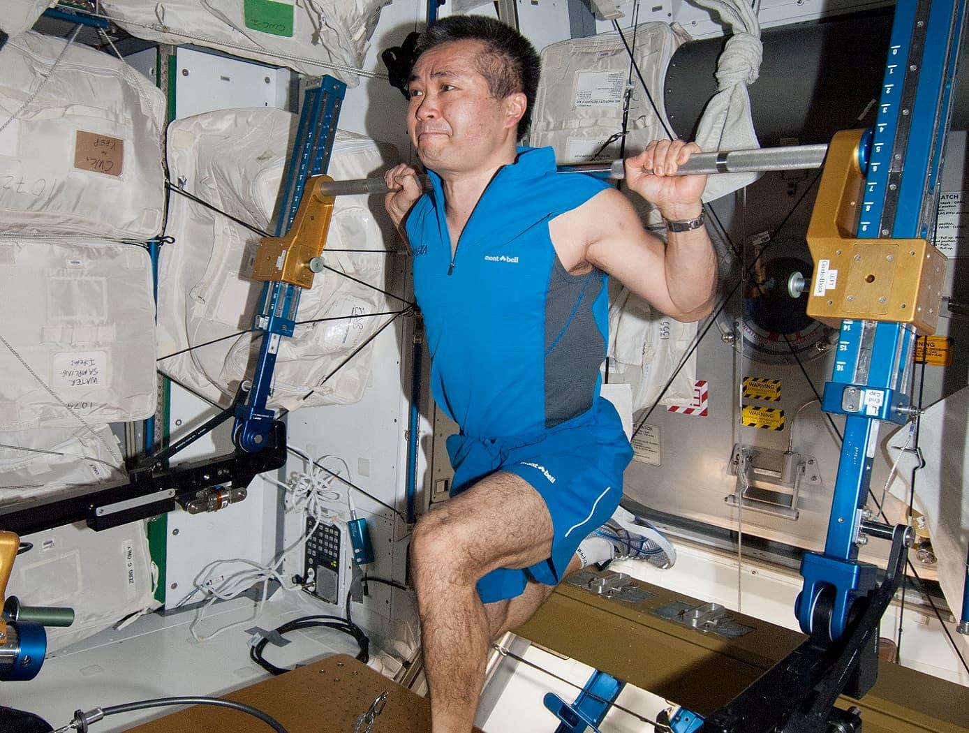 宇宙空間での筋力低下を防止する分子医学、寝たきり患者への応用も